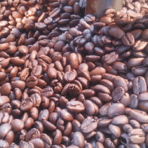 本月限時--好康快訊(本標再多送半磅)營業用曼巴咖啡豆4磅(1800公克)