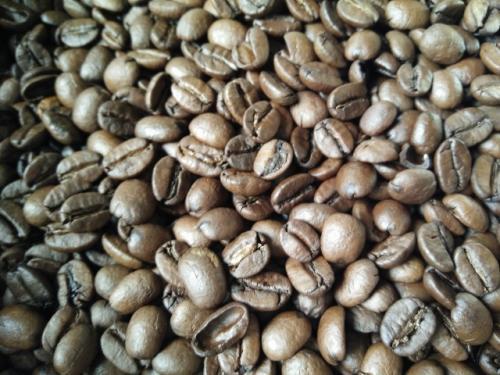 巴西喜拉朵咖啡豆一磅