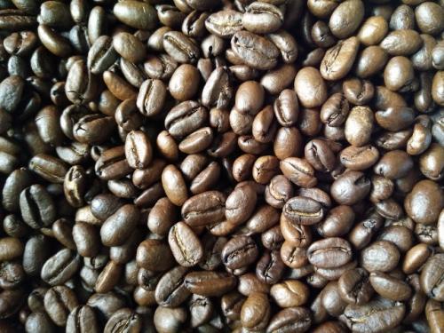 衣索比亞-摩卡咖啡豆一磅