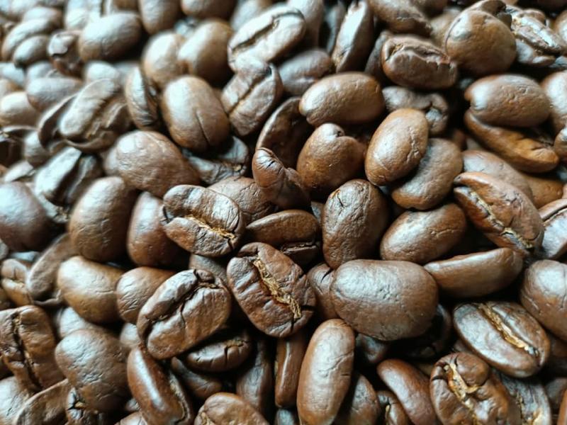 墨西哥-奇帕茲象豆 (巨型特級藍山)咖啡半磅