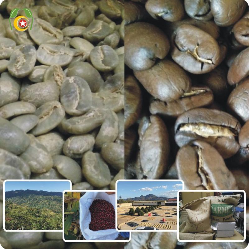 ☘莊園混搭風味0812組☘  瓜地馬拉安提瓜火山咖啡豆 混搭 巴西咖啡 1.5磅=1050元•再送半磅(合計2磅=同一口味)